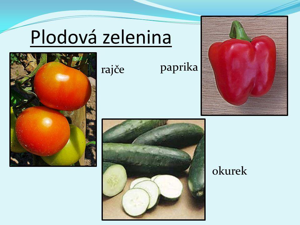 Plodová zelenina rajče paprika okurek