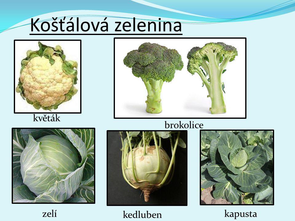 Košťálová zelenina květák zelí brokolice kedluben kapusta