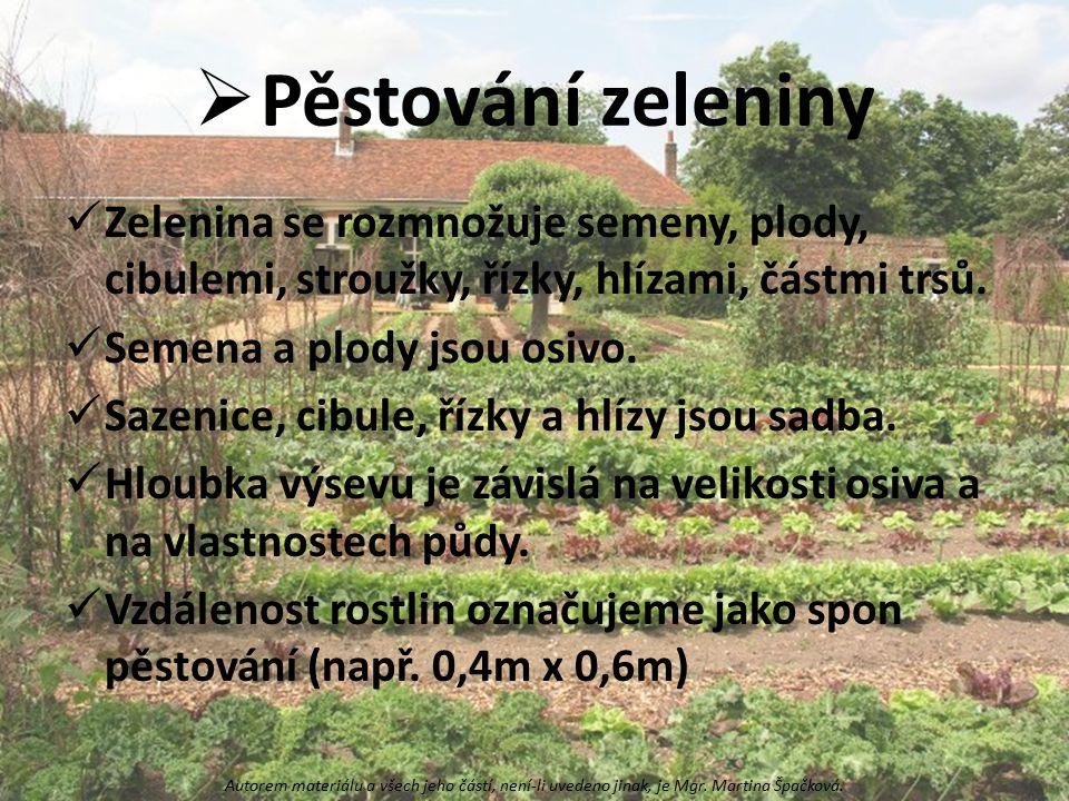  Pěstování zeleniny Zelenina se rozmnožuje semeny, plody, cibulemi, stroužky, řízky, hlízami, částmi trsů. Semena a plody jsou osivo. Sazenice, cibul