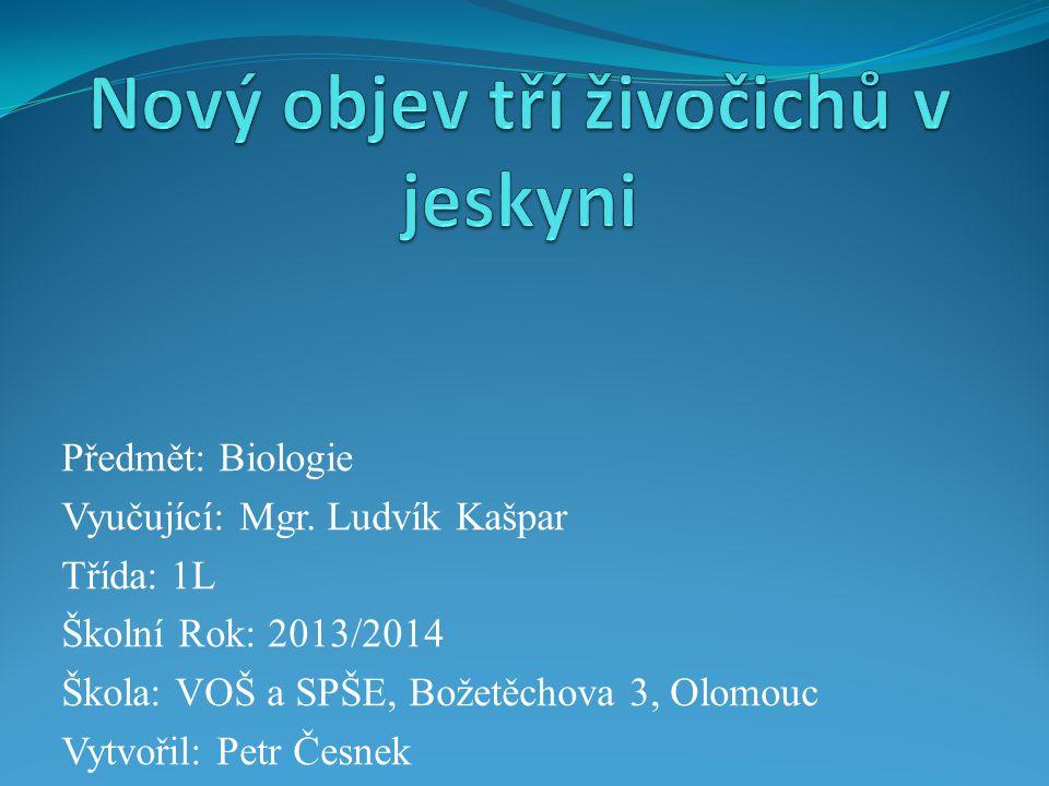Předmět: Biologie Vyučující: Mgr.