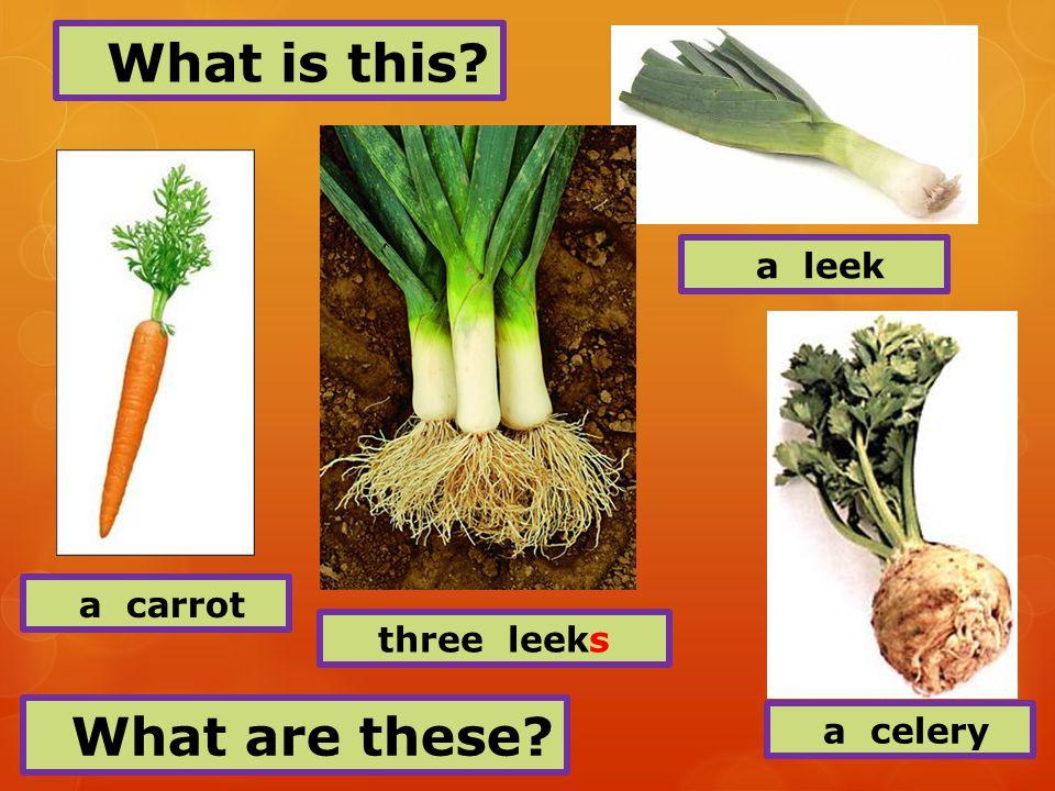 an onion a garlic a radish a cucumber
