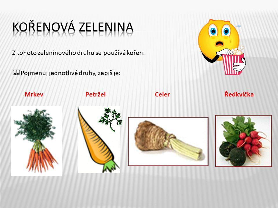 Z tohoto zeleninového druhu se používá kořen.