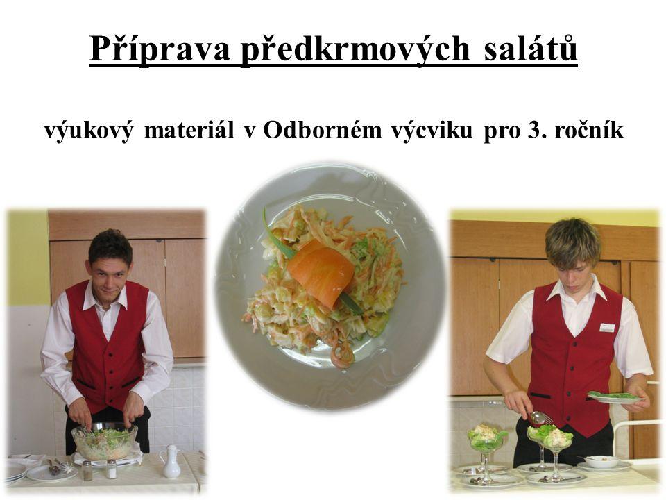 Příprava předkrmových salátů výukový materiál v Odborném výcviku pro 3. ročník