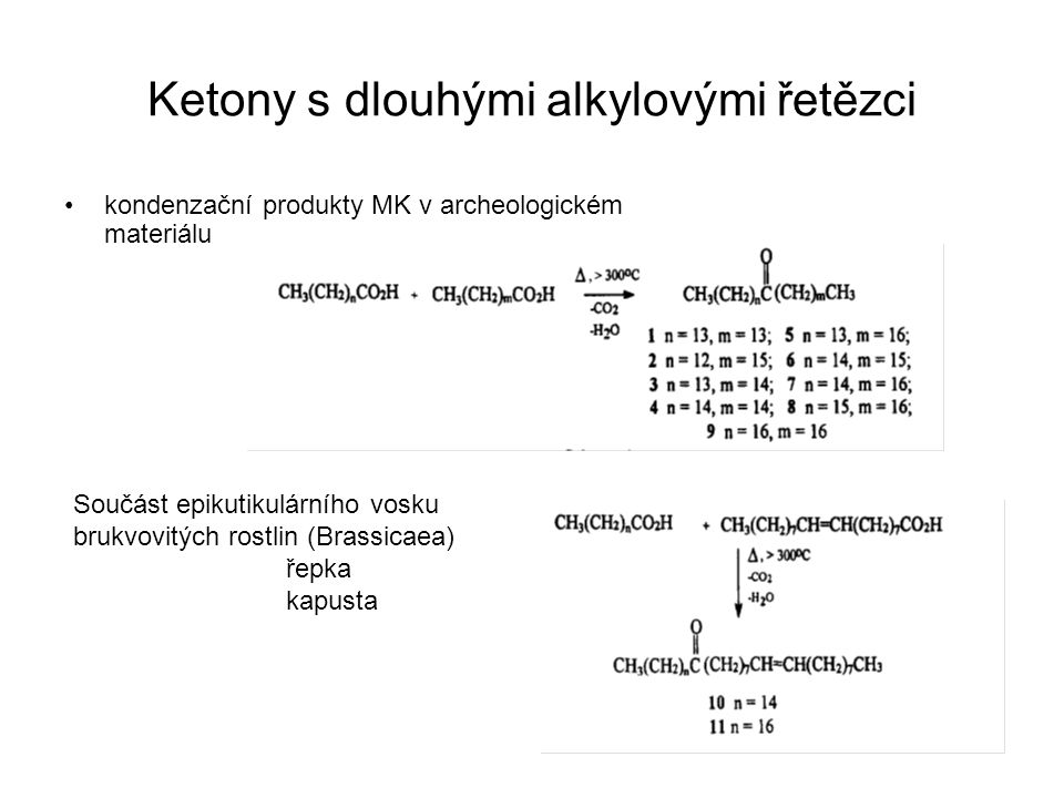 Ketony s dlouhými alkylovými řetězci kondenzační produkty MK v archeologickém materiálu Součást epikutikulárního vosku brukvovitých rostlin (Brassicae