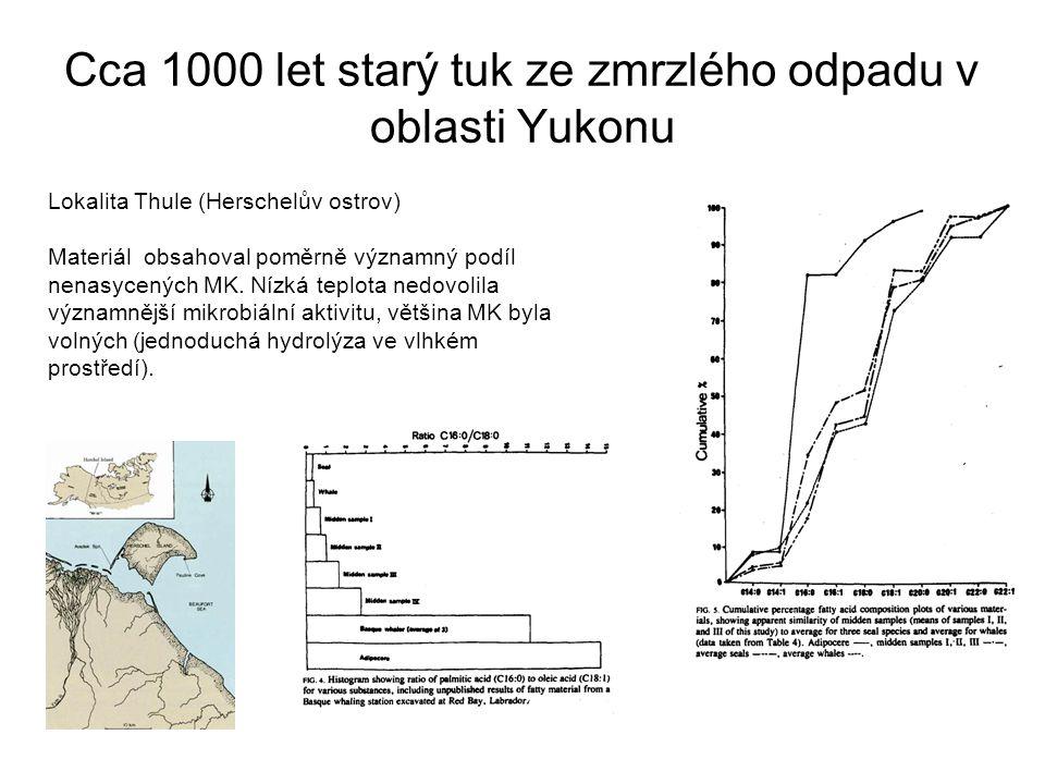Cca 1000 let starý tuk ze zmrzlého odpadu v oblasti Yukonu Lokalita Thule (Herschelův ostrov) Materiál obsahoval poměrně významný podíl nenasycených M