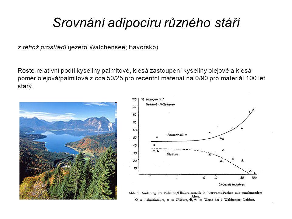 Srovnání adipociru různého stáří z téhož prostředí (jezero Walchensee; Bavorsko) Roste relativní podíl kyseliny palmitové, klesá zastoupení kyseliny o