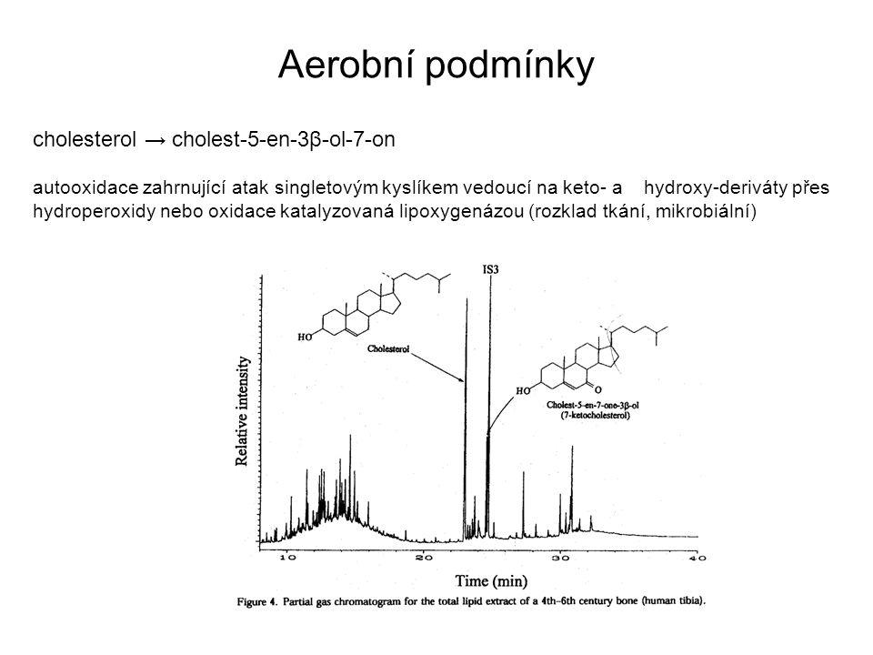 Aerobní podmínky cholesterol → cholest-5-en-3β-ol-7-on autooxidace zahrnující atak singletovým kyslíkem vedoucí na keto- a hydroxy-deriváty přes hydro