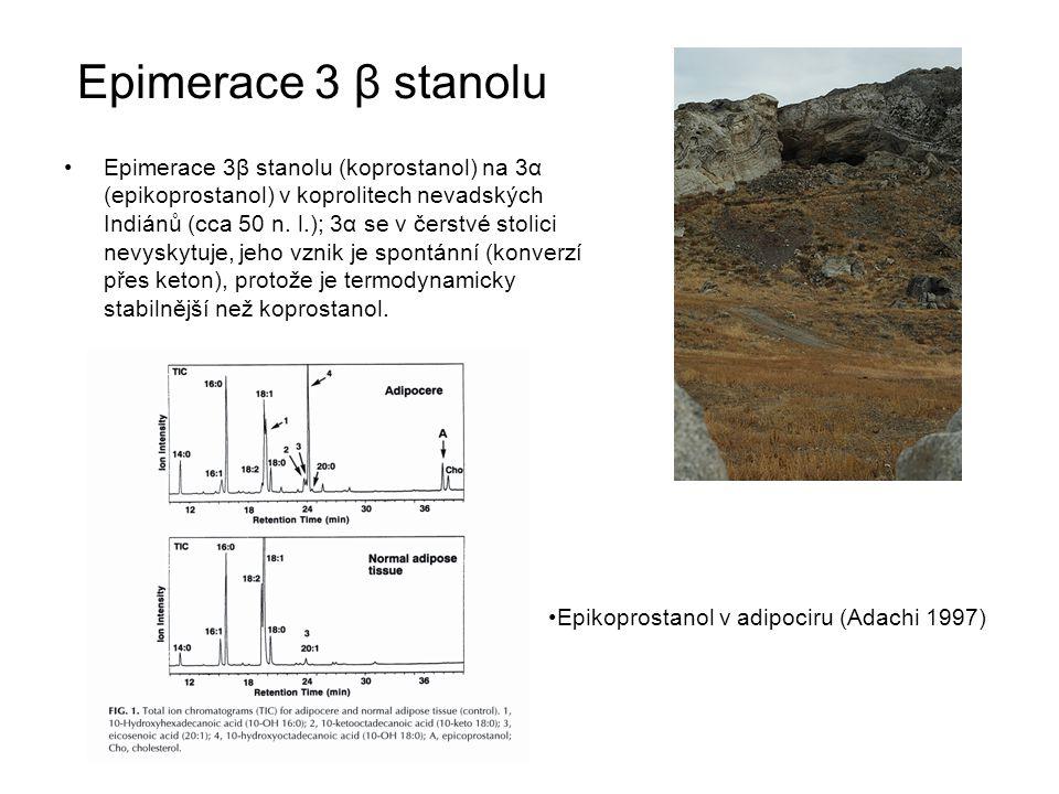 Epimerace 3 β stanolu Epimerace 3β stanolu (koprostanol) na 3α (epikoprostanol) v koprolitech nevadských Indiánů (cca 50 n. l.); 3α se v čerstvé stoli