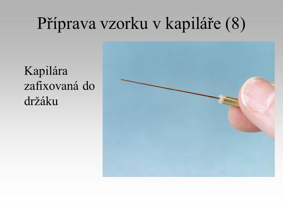 Příprava vzorku v kapiláře (8) Kapilára zafixovaná do držáku