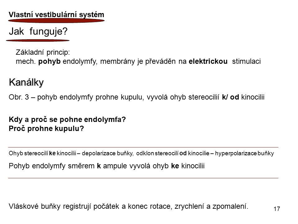 17 Kanálky Obr. 3 – pohyb endolymfy prohne kupulu, vyvolá ohyb stereocilií k/ od kinocilii Kdy a proč se pohne endolymfa? Proč prohne kupulu? Ohyb ste