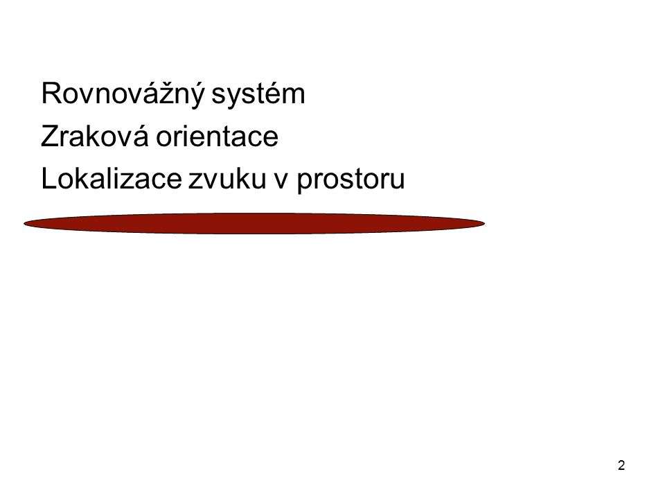 2 Rovnovážný systém Zraková orientace Lokalizace zvuku v prostoru
