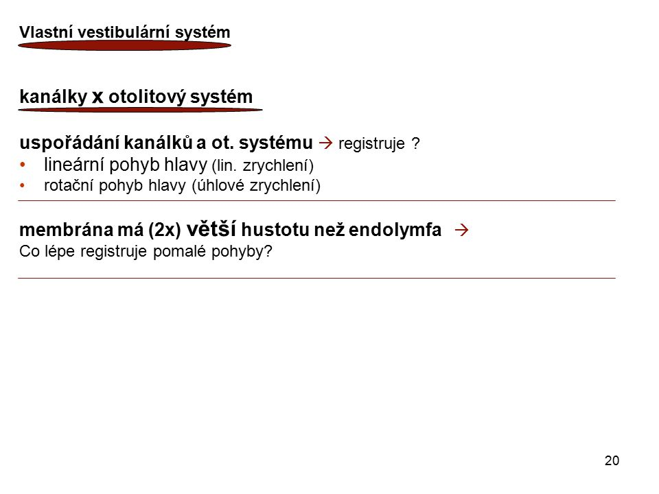20 Vlastní vestibulární systém kanálky x otolitový systém uspořádání kanálků a ot. systému  registruje ? lineární pohyb hlavy (lin. zrychlení) rotačn