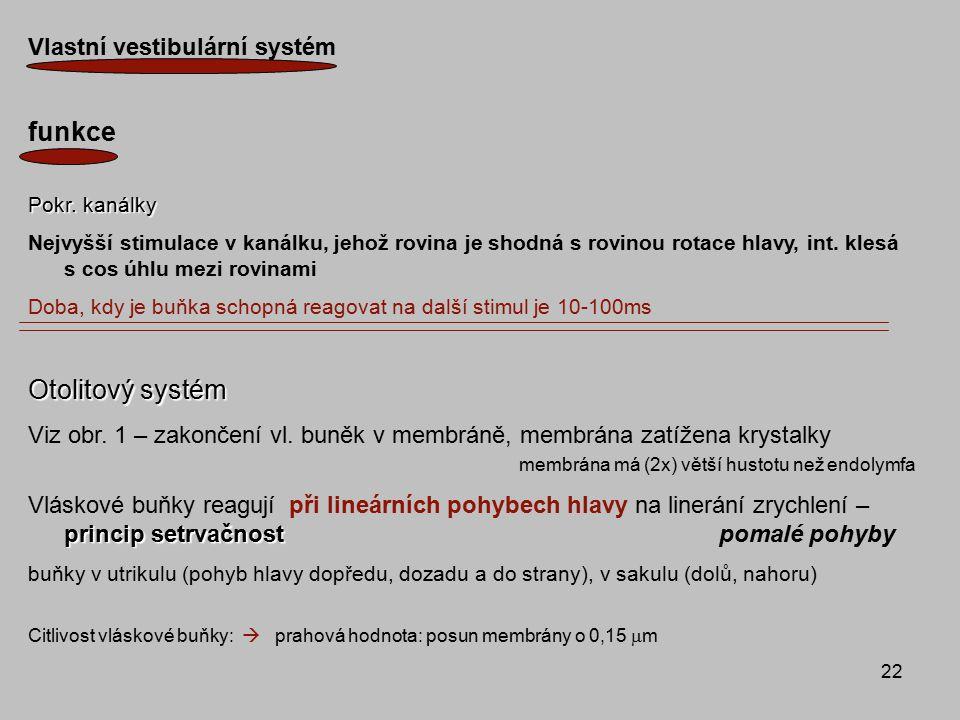 22 Vlastní vestibulární systém funkce Pokr. kanálky Nejvyšší stimulace v kanálku, jehož rovina je shodná s rovinou rotace hlavy, int. klesá s cos úhlu