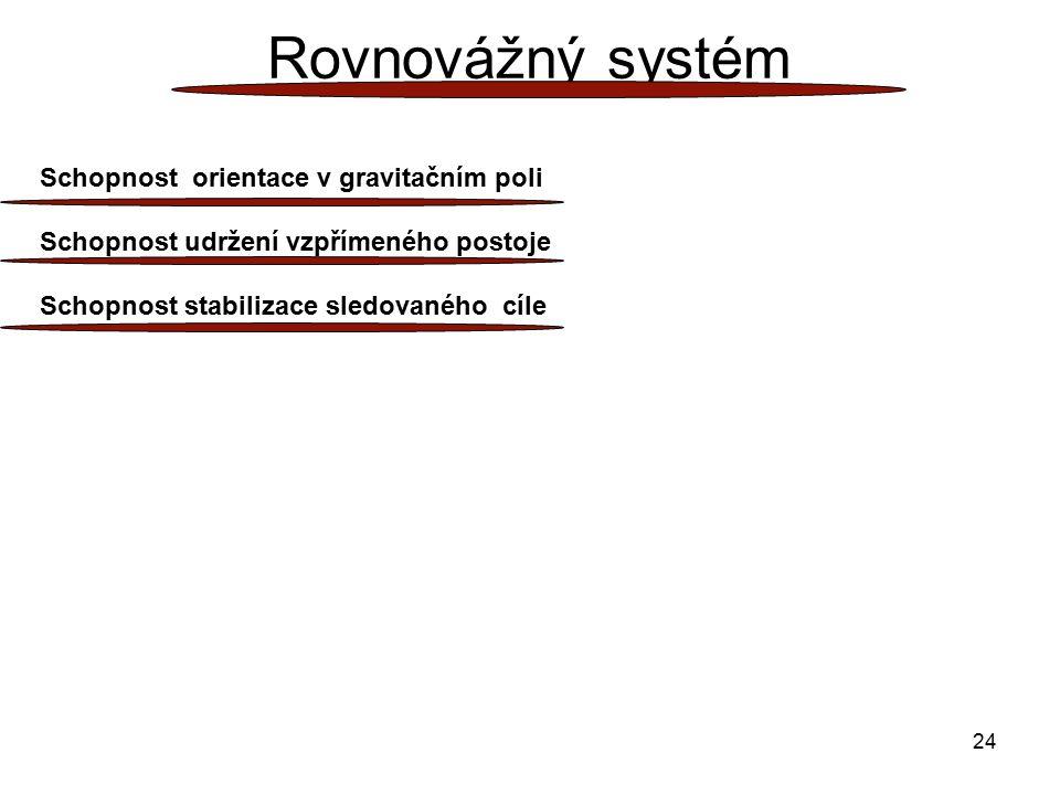 24 Rovnovážný systém Schopnost orientace v gravitačním poli Schopnost udržení vzpřímeného postoje Schopnost stabilizace sledovaného cíle
