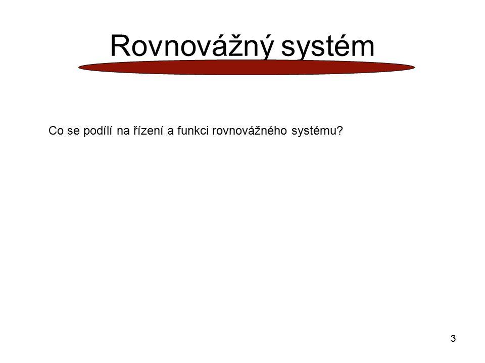 3 Rovnovážný systém Co se podílí na řízení a funkci rovnovážného systému?