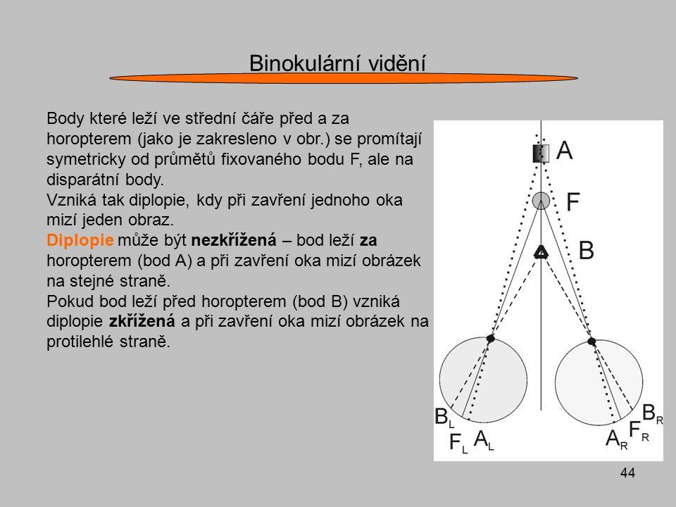 44 Binokulární vidění Body které leží ve střední čáře před a za horopterem (jako je zakresleno v obr.) se promítají symetricky od průmětů fixovaného b