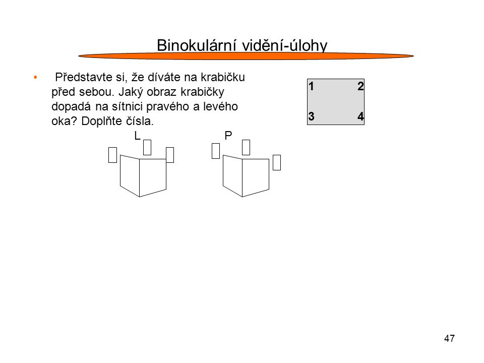 47 Binokulární vidění-úlohy Představte si, že díváte na krabičku před sebou. Jaký obraz krabičky dopadá na sítnici pravého a levého oka? Doplňte čísla