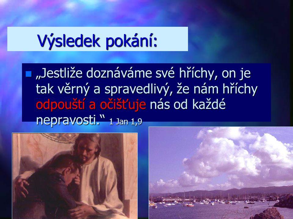 """Co je pokání? n""""n""""n""""n""""On na svém těle vzal naše hříchy na kříž, abychom zemřeli hříchům a byli živi spravedlnosti. Jeho rány vás uzdravily."""" 1 Pt 2,24"""