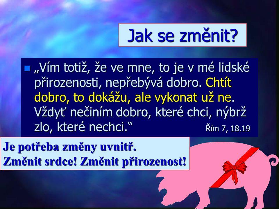 """n""""n""""n""""n""""Věřit Bohu znamená spolehnout se na to, v co doufáme, a být si jist tím, co nevidíme. Žid 11,1 Co je víra."""