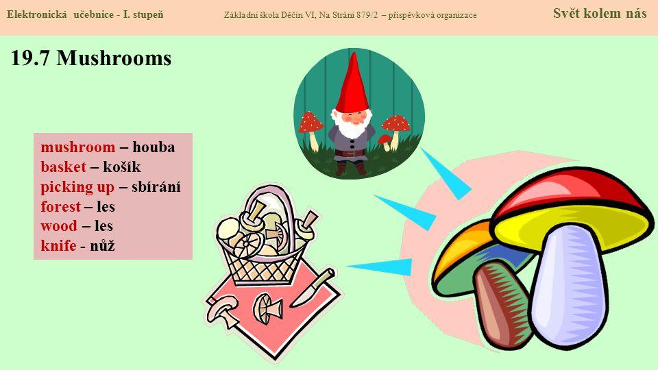 19.7 Mushrooms Elektronická učebnice - I.