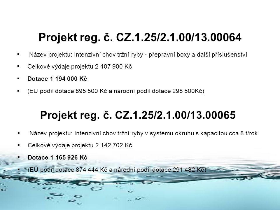 Projekt reg.č.