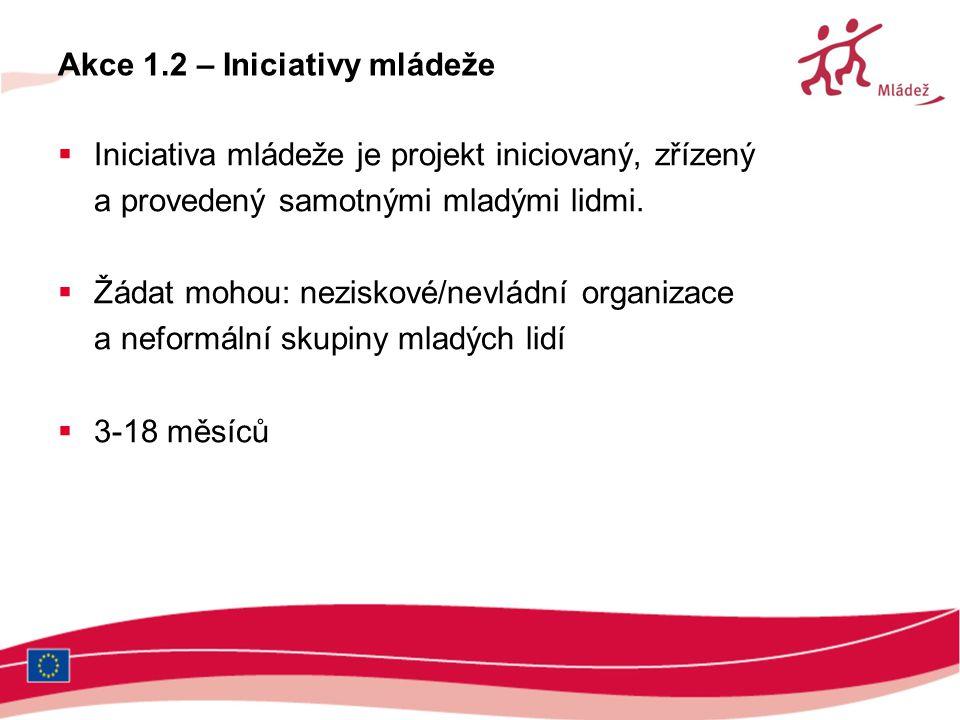 Akce 1.2 – Iniciativy mládeže  Iniciativa mládeže je projekt iniciovaný, zřízený a provedený samotnými mladými lidmi.  Žádat mohou: neziskové/nevlád