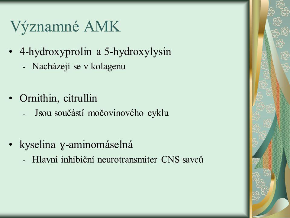 Významné AMK 4-hydroxyprolin a 5-hydroxylysin - Nacházejí se v kolagenu Ornithin, citrullin - Jsou součástí močovinového cyklu kyselina ɣ -aminomáseln