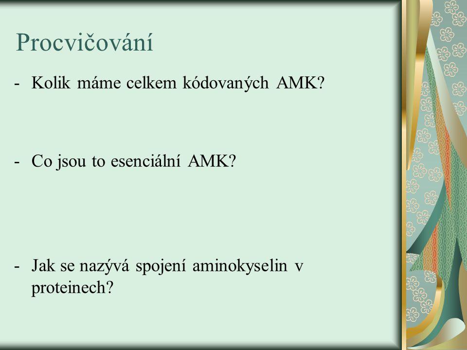 Procvičování -Kolik máme celkem kódovaných AMK? -Co jsou to esenciální AMK? -Jak se nazývá spojení aminokyselin v proteinech?