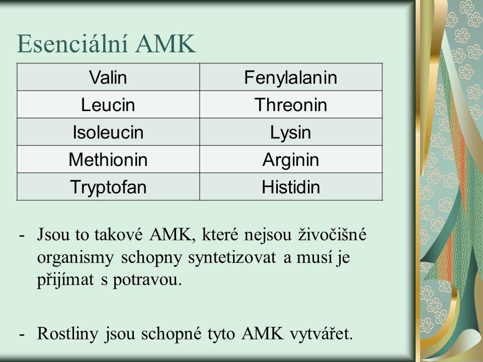Esenciální AMK -Jsou to takové AMK, které nejsou živočišné organismy schopny syntetizovat a musí je přijímat s potravou. -Rostliny jsou schopné tyto A