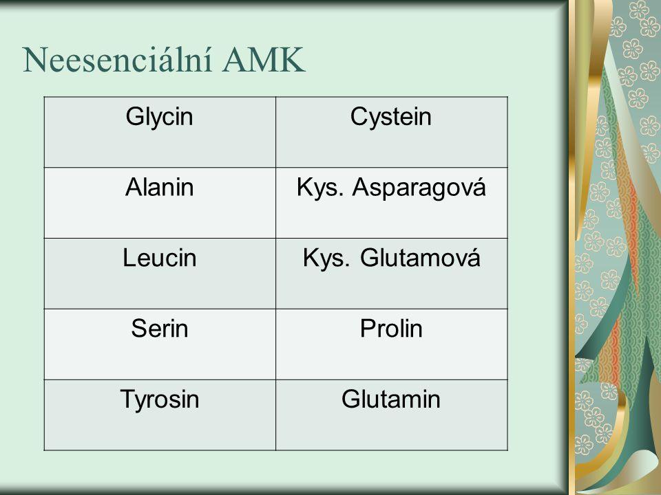 Neesenciální AMK GlycinCystein AlaninKys. Asparagová LeucinKys. Glutamová SerinProlin TyrosinGlutamin