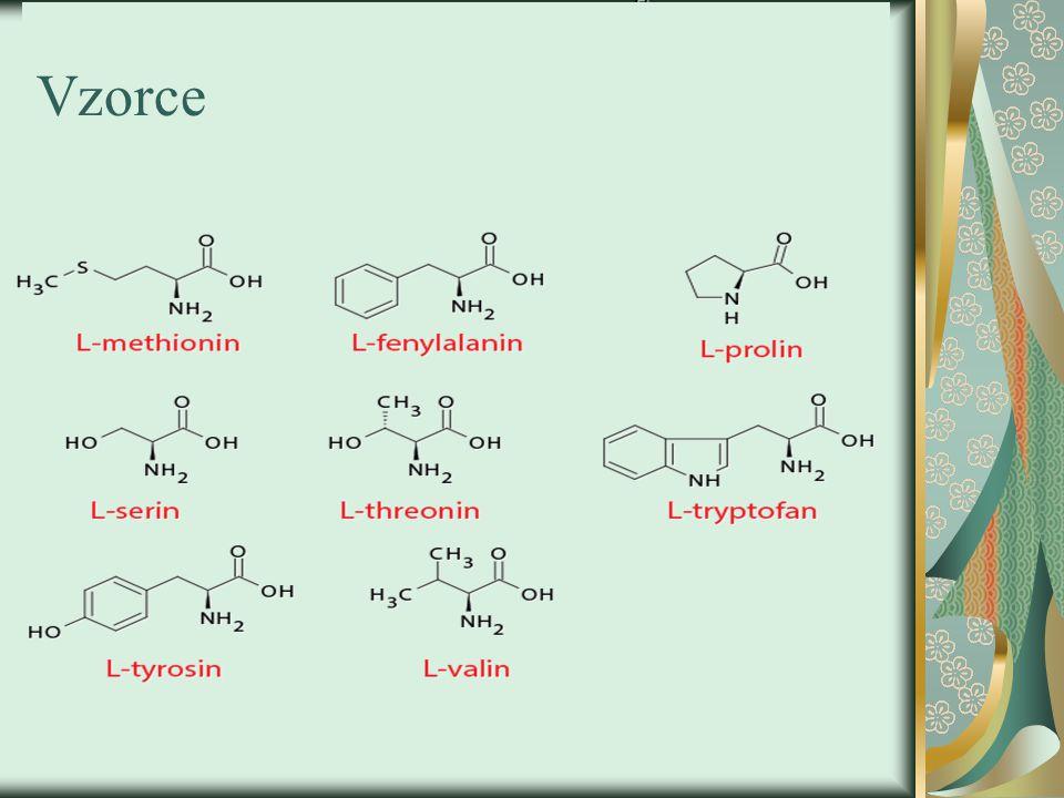 Významné AMK 4-hydroxyprolin a 5-hydroxylysin - Nacházejí se v kolagenu Ornithin, citrullin - Jsou součástí močovinového cyklu kyselina ɣ -aminomáselná - Hlavní inhibiční neurotransmiter CNS savců