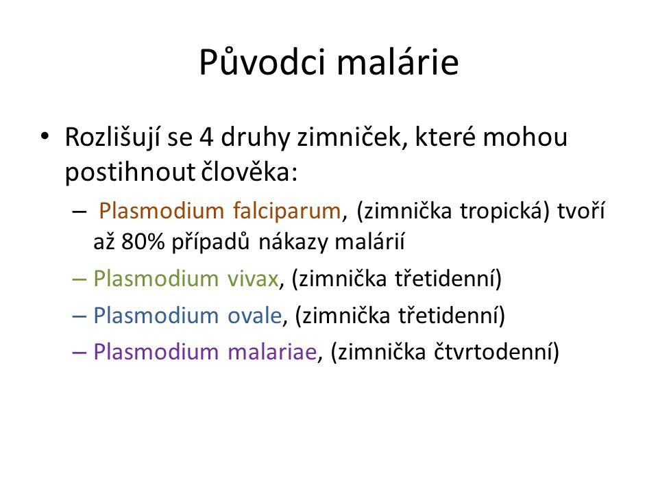Původci malárie Rozlišují se 4 druhy zimniček, které mohou postihnout člověka: – Plasmodium falciparum, (zimnička tropická) tvoří až 80% případů nákaz