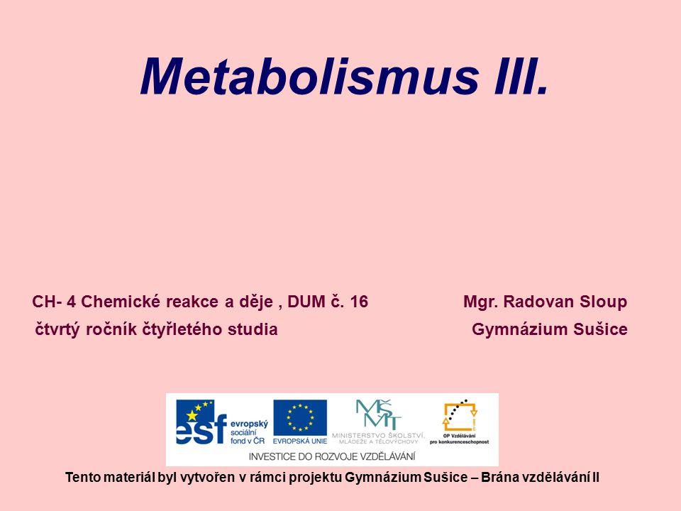 Metabolismus III. Mgr.