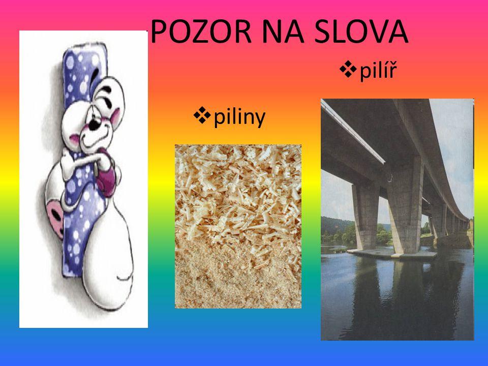 POZOR NA SLOVA ppiliny  pilíř