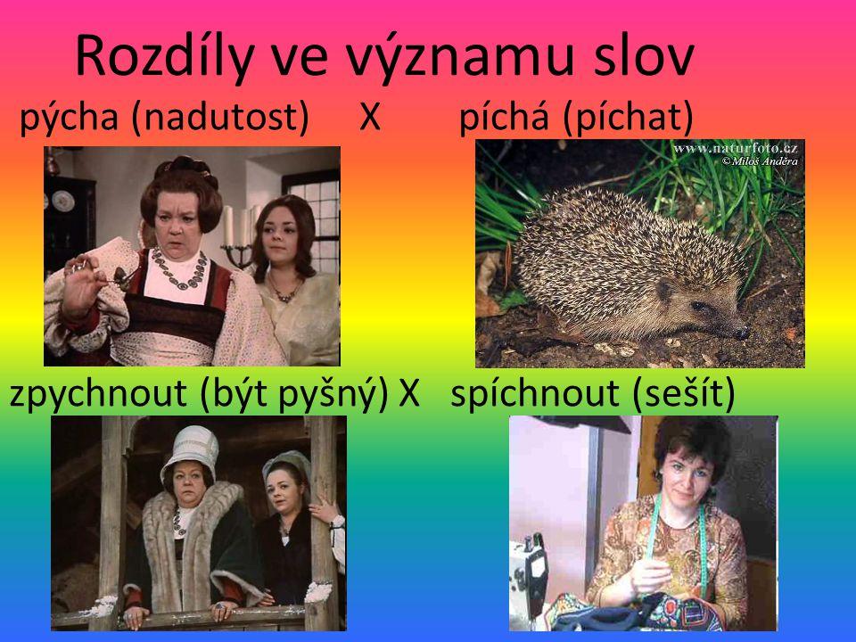 Rozdíly ve významu slov pýcha (nadutost) X píchá (píchat) zpychnout (být pyšný) X spíchnout (sešít)