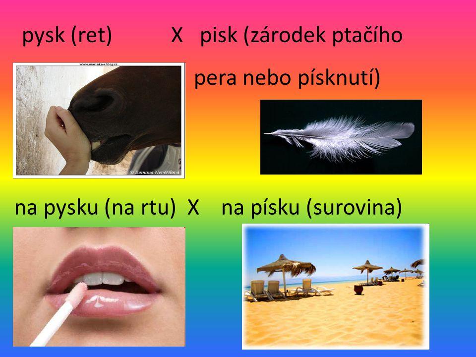 pysk (ret) X pisk (zárodek ptačího pera nebo písknutí) na pysku (na rtu) X na písku (surovina)