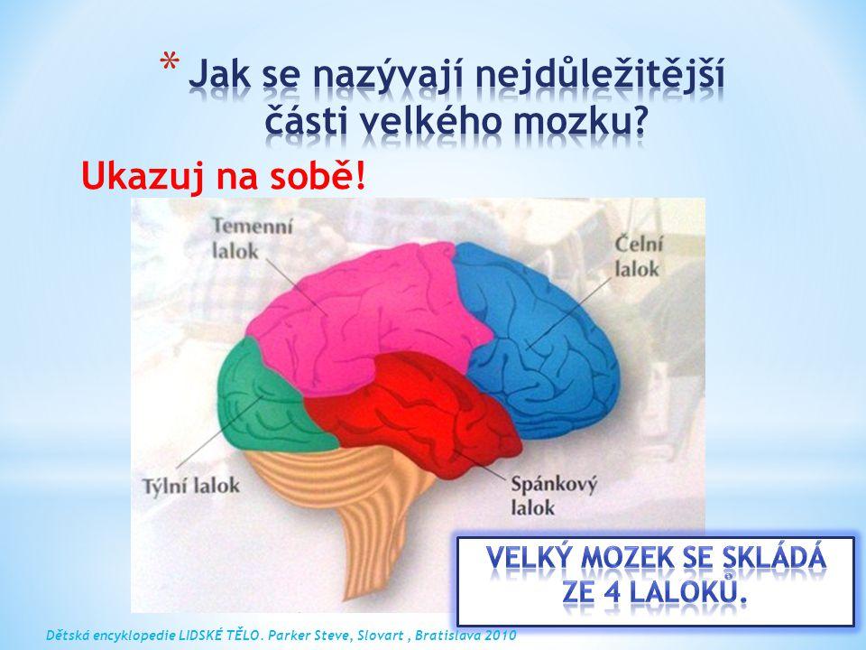Ukazuj na sobě! Dětská encyklopedie LIDSKÉ TĚLO. Parker Steve, Slovart, Bratislava 2010