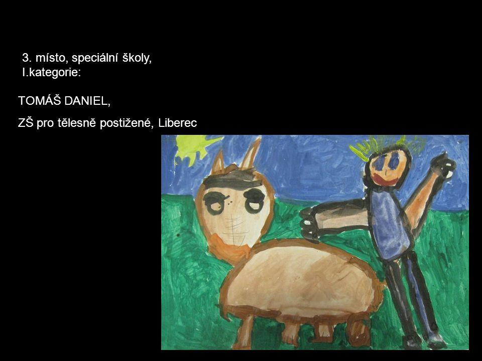 3. místo, speciální školy, I.kategorie: TOMÁŠ DANIEL, ZŠ pro tělesně postižené, Liberec