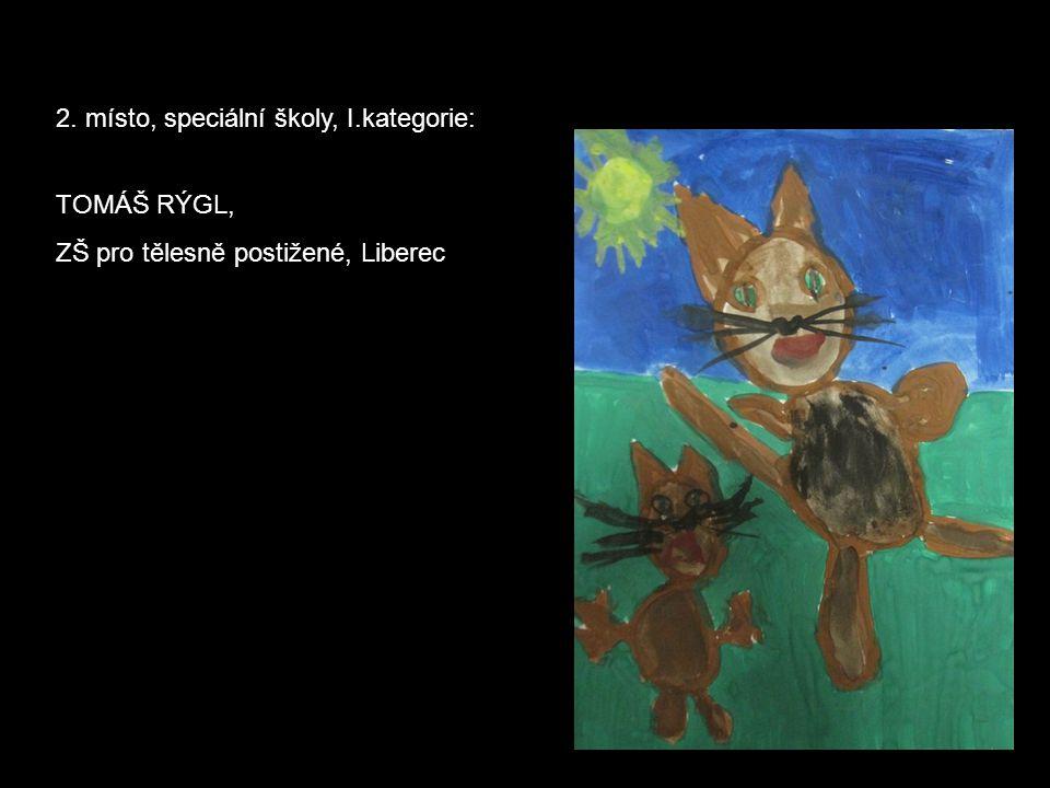 2. místo, speciální školy, I.kategorie: TOMÁŠ RÝGL, ZŠ pro tělesně postižené, Liberec