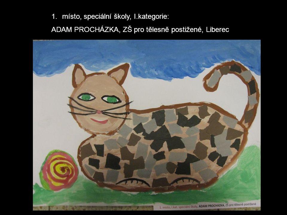 1.místo, speciální školy, I.kategorie: ADAM PROCHÁZKA, ZŠ pro tělesně postižené, Liberec