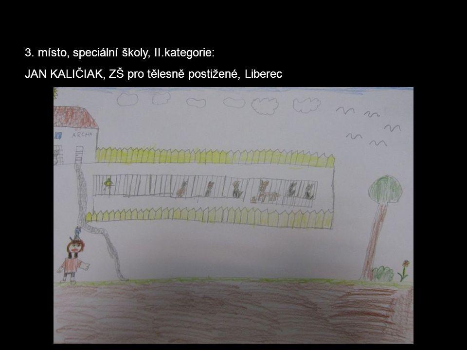3. místo, speciální školy, II.kategorie: JAN KALIČIAK, ZŠ pro tělesně postižené, Liberec