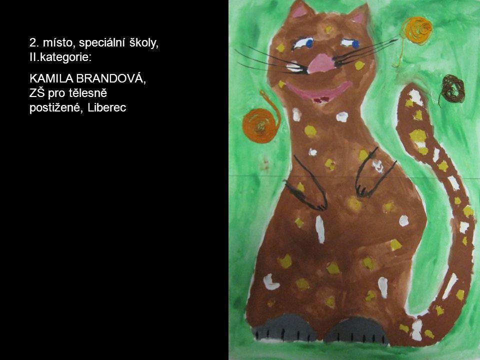 2. místo, speciální školy, II.kategorie: KAMILA BRANDOVÁ, ZŠ pro tělesně postižené, Liberec