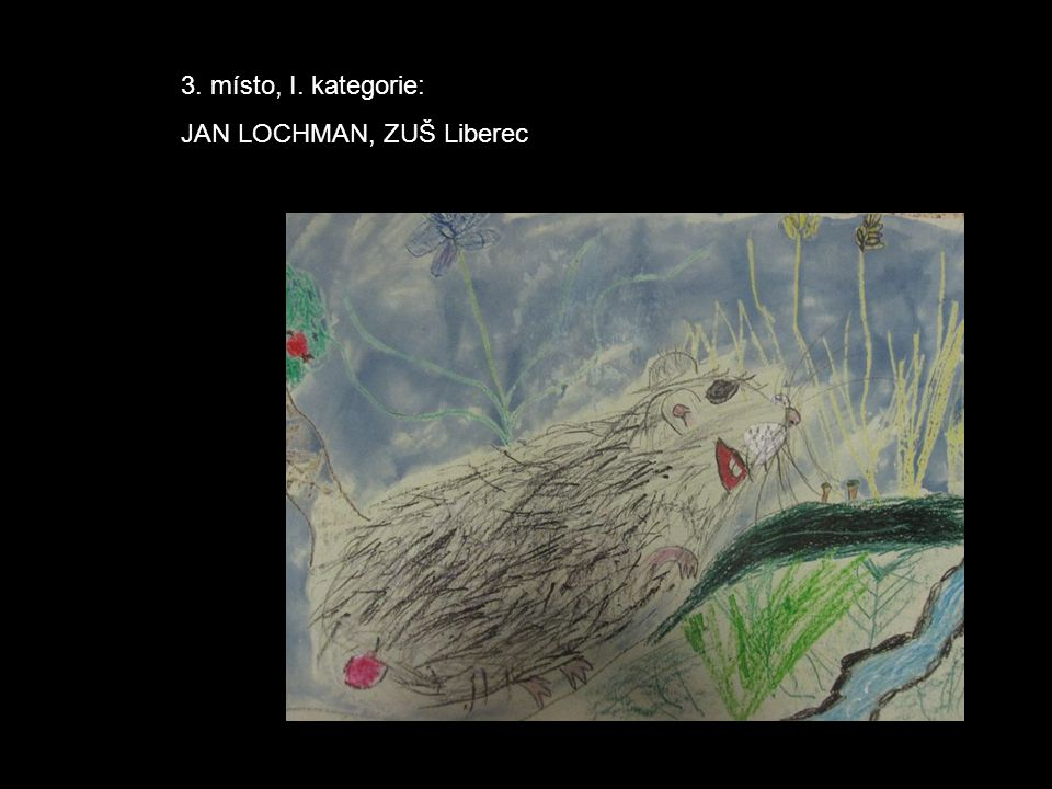 3. místo, I. kategorie: JAN LOCHMAN, ZUŠ Liberec