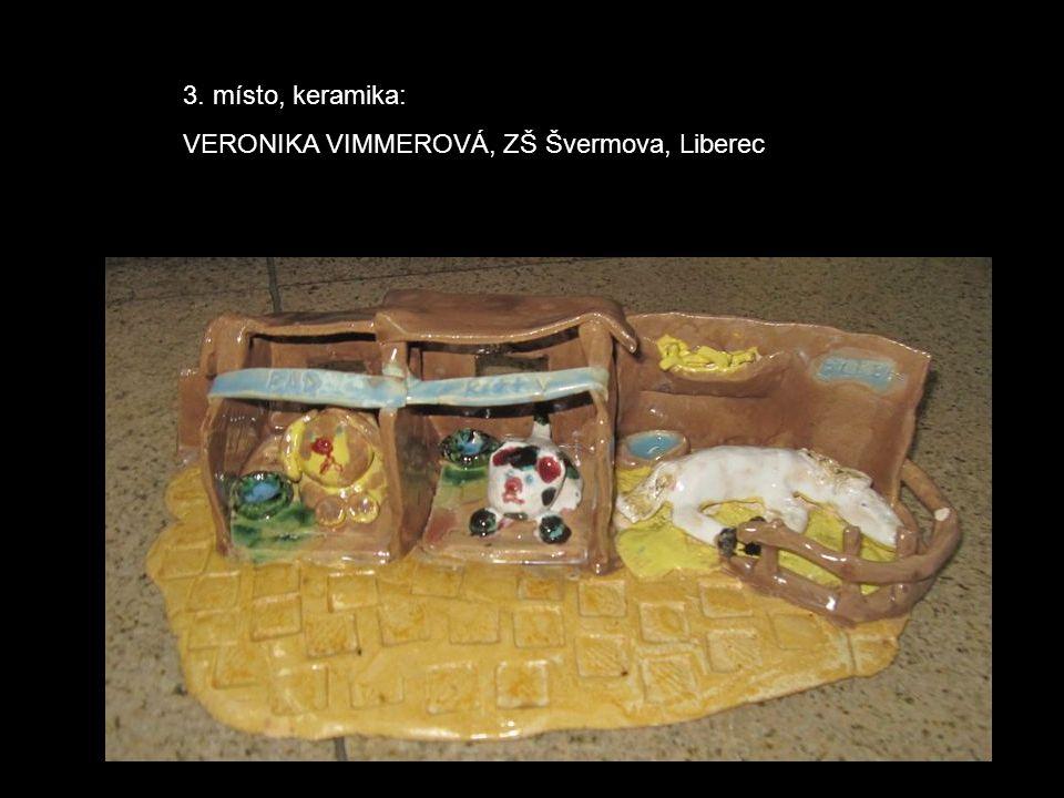 3. místo, keramika: VERONIKA VIMMEROVÁ, ZŠ Švermova, Liberec