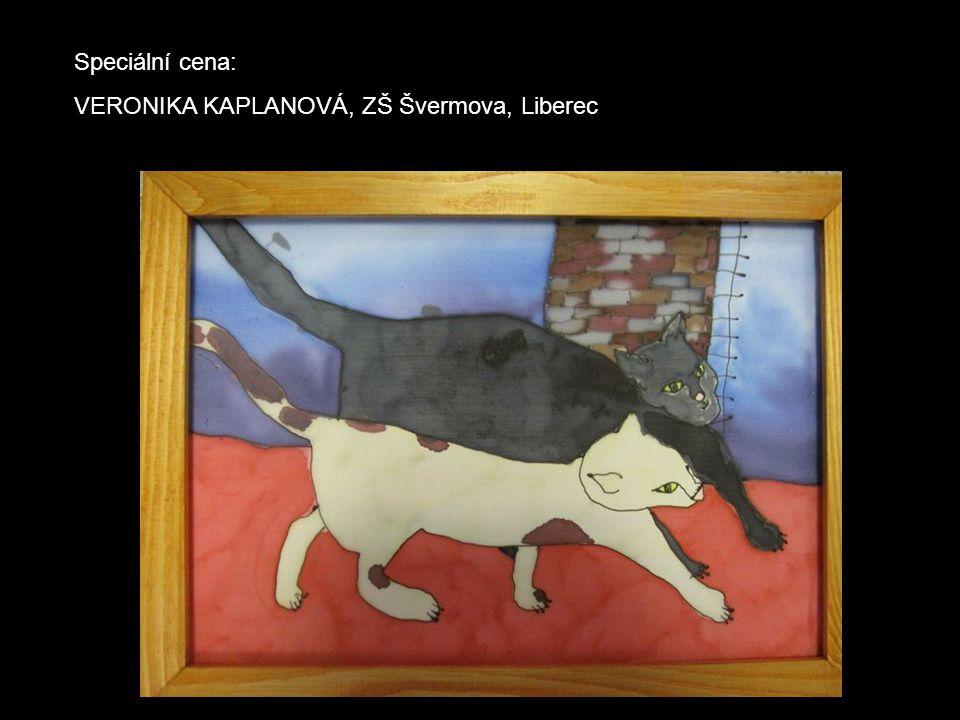 Speciální cena: VERONIKA KAPLANOVÁ, ZŠ Švermova, Liberec