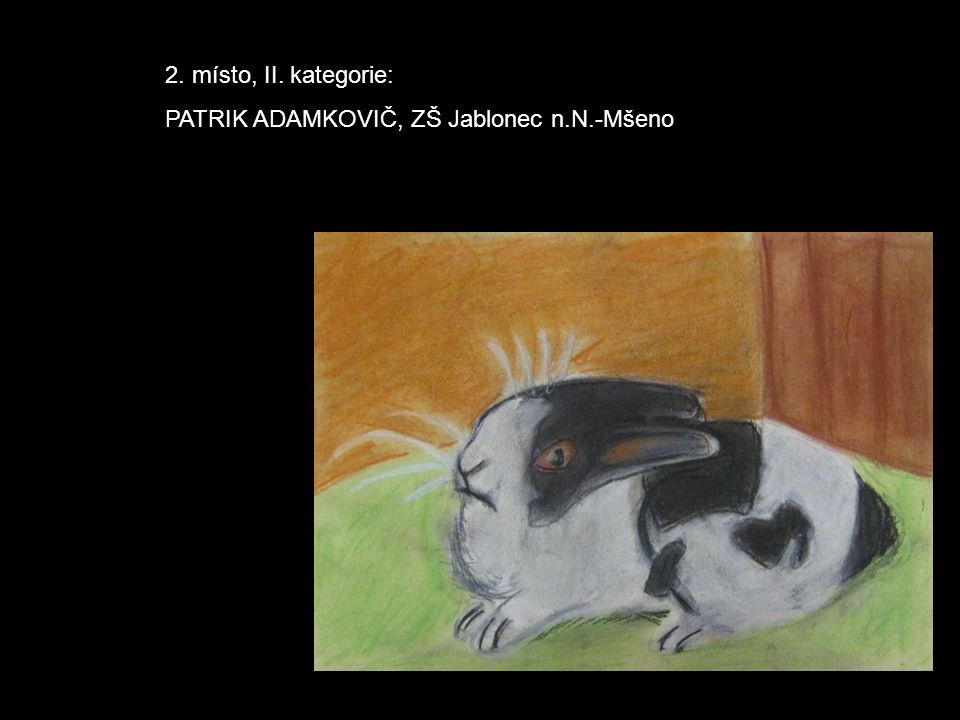 2. místo, II. kategorie: PATRIK ADAMKOVIČ, ZŠ Jablonec n.N.-Mšeno
