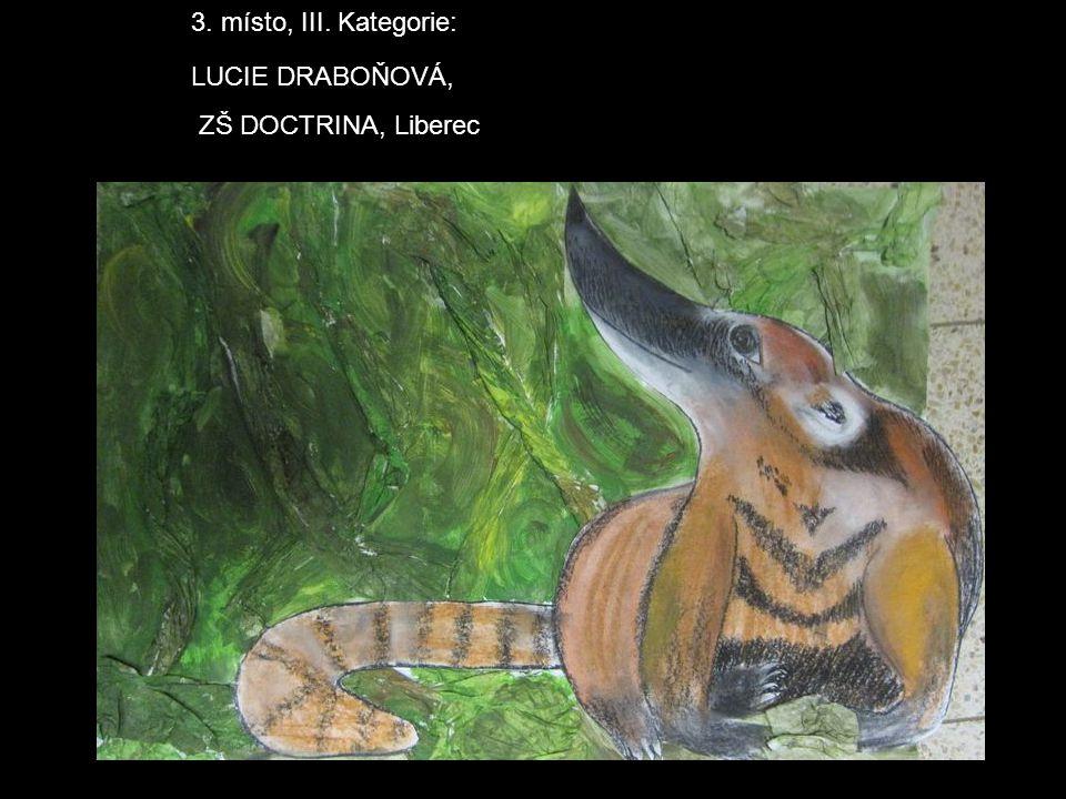 3. místo, III. Kategorie: LUCIE DRABOŇOVÁ, ZŠ DOCTRINA, Liberec