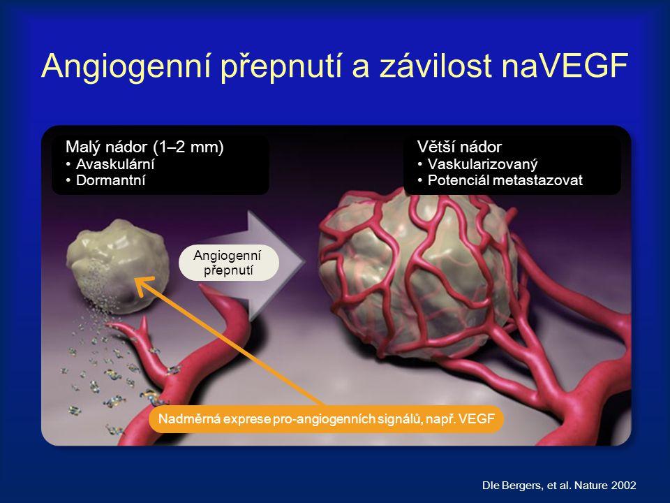Angiogenní přepnutí a závilost naVEGF Dle Bergers, et al. Nature 2002 Malý nádor (1–2 mm) Avaskulární Dormantní Větší nádor Vaskularizovaný Potenciál