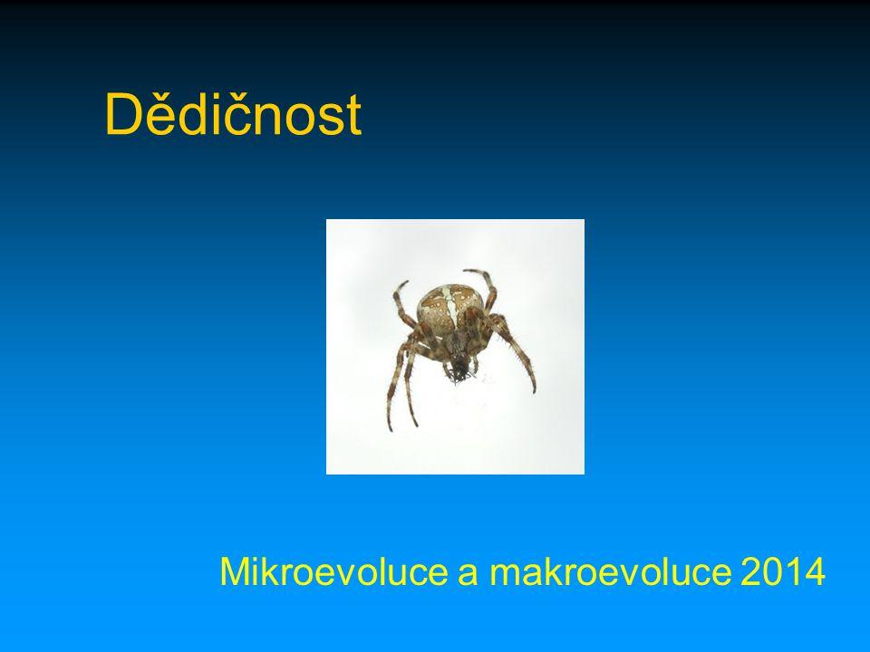 Dědičnost Mikroevoluce a makroevoluce 2014