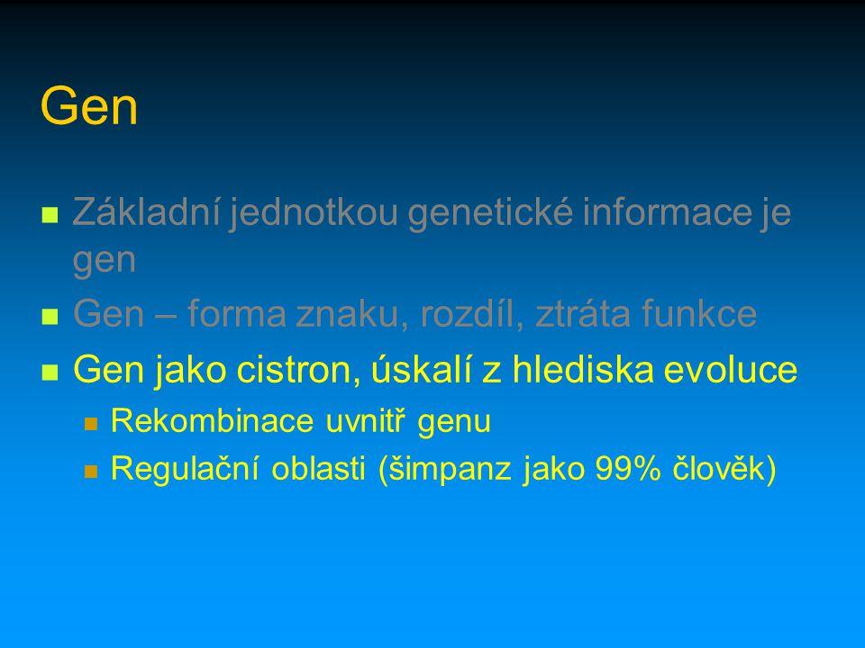 Gen Základní jednotkou genetické informace je gen Gen – forma znaku, rozdíl, ztráta funkce Gen jako cistron, úskalí z hlediska evoluce Rekombinace uvn